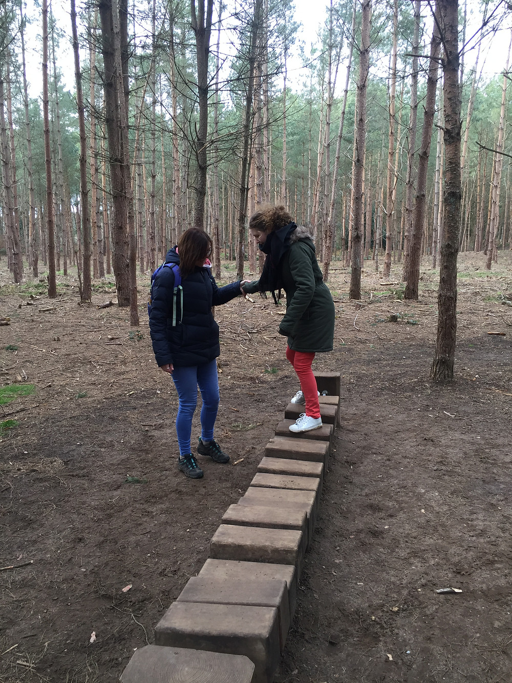 Sensory Trail at Thetford Forest