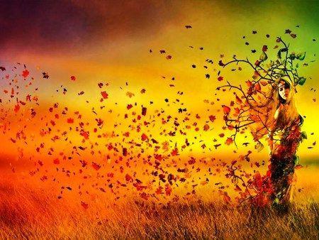 windy-tree