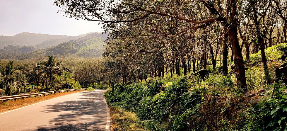 manyana-hostel-coorg-landscape-image_edi