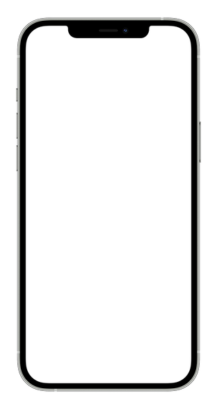 apple-iphone12promax-silver-portrait.png