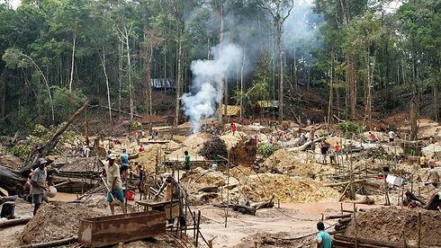 goldminenbedrohendenregenwald100__v-gsea