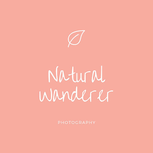 Natural Wanderer Logo.png