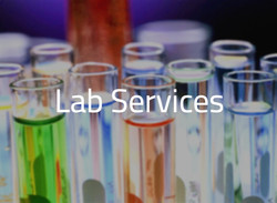 LabServices_edited