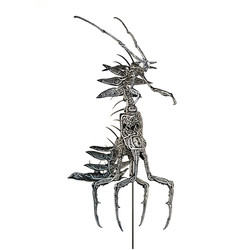 Dracomantis