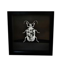 Mouse Bug 1/4 Gen II (UNIQUE PIECE)