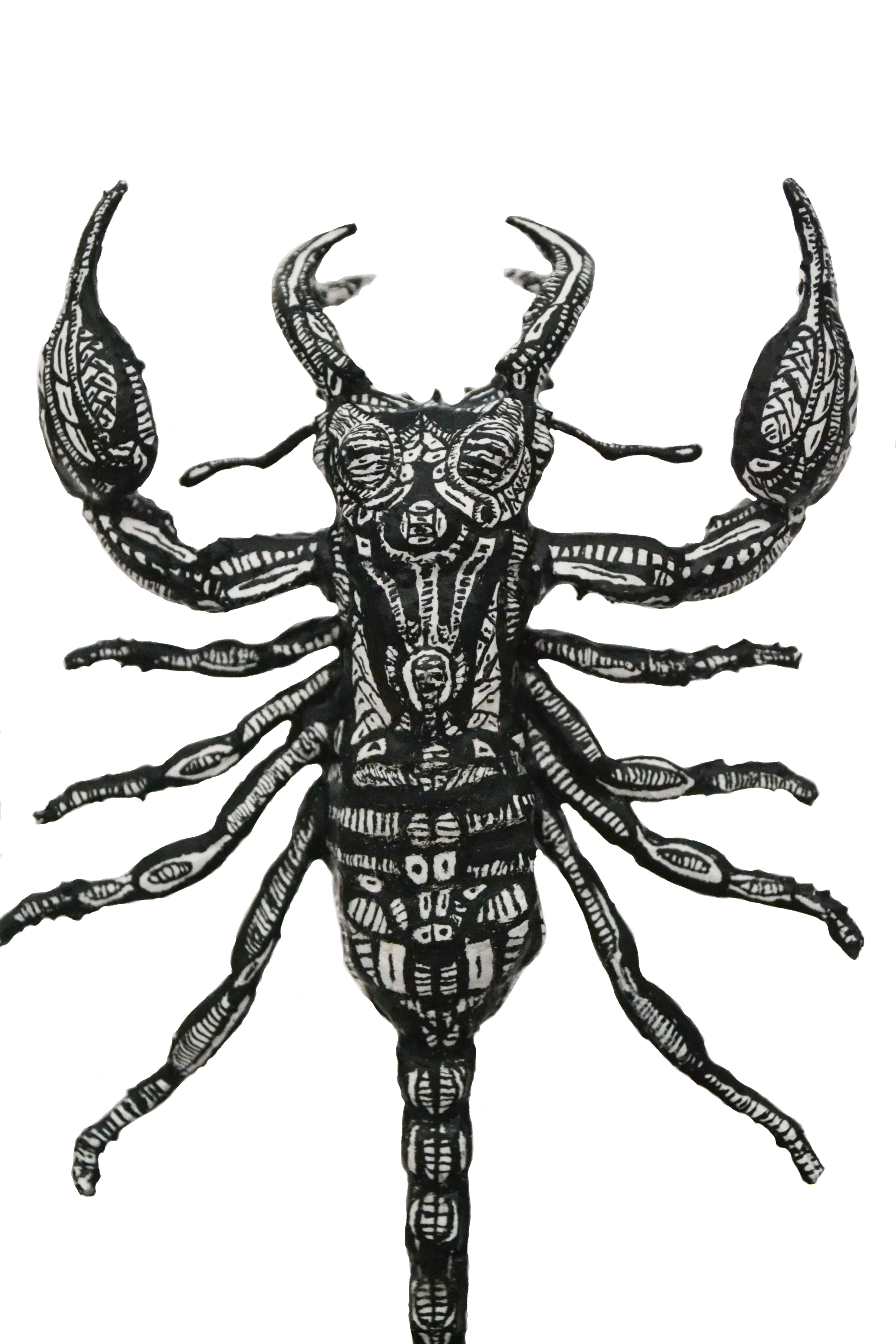 Lucanus Scorpiones