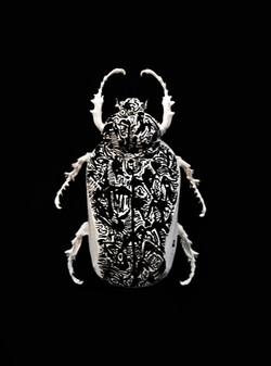 Mouse Bug 4/4 Gen II (UNIQUE PIECE)