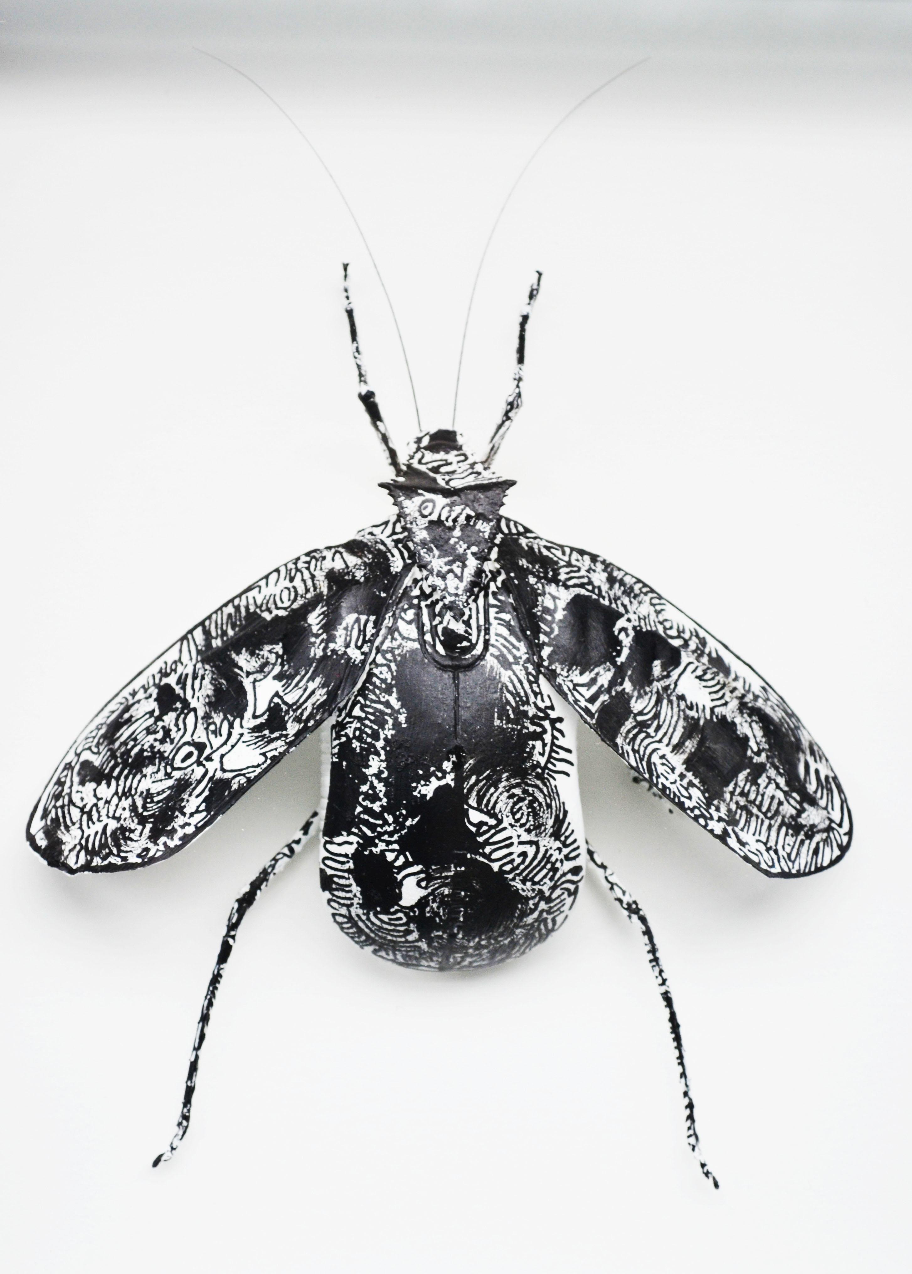Mouse Bug 5/6 Gen I (UNIQUE PIECE)