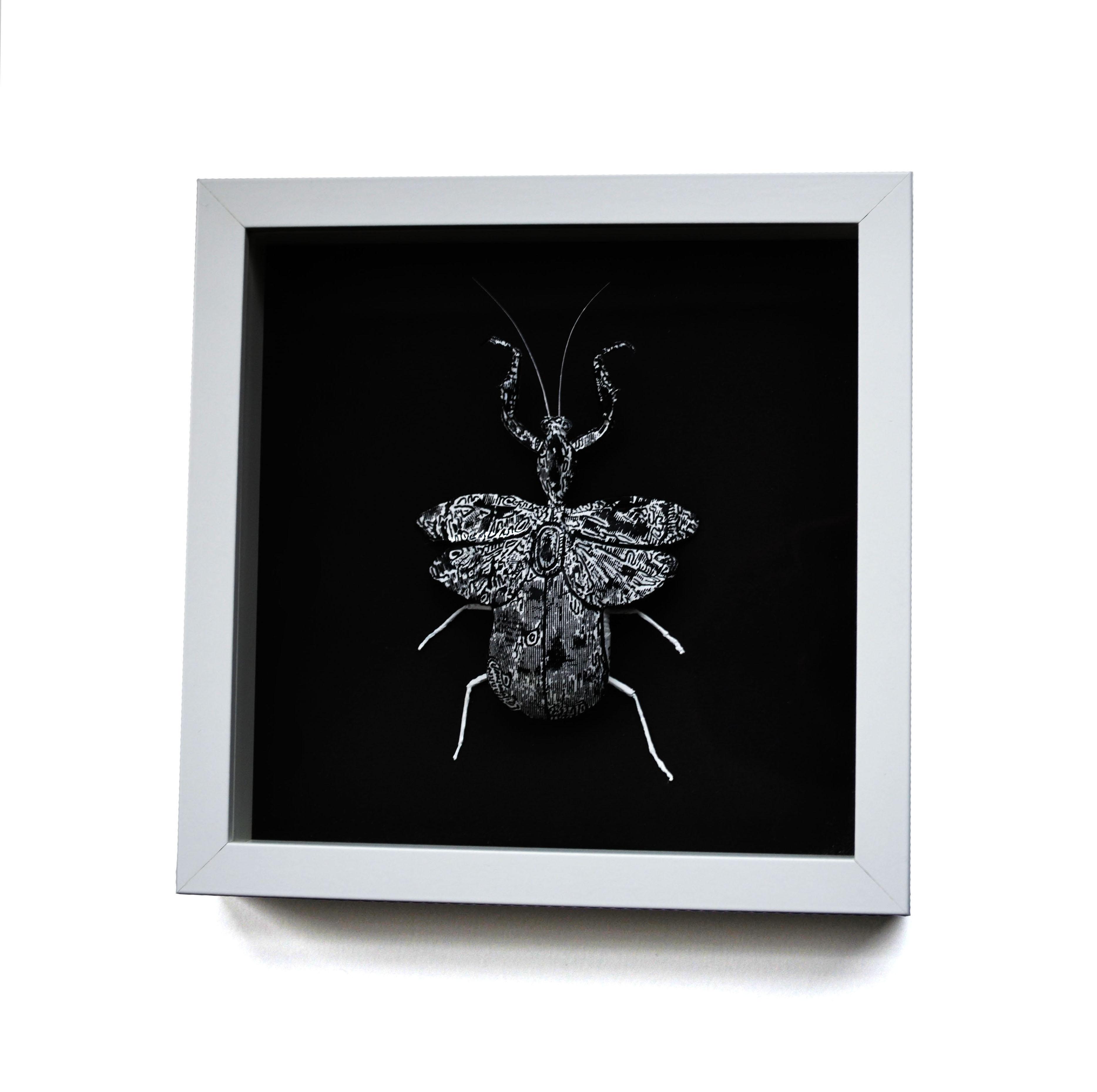 Mouse Bug 3/6 Gen I (UNIQUE PIECE)