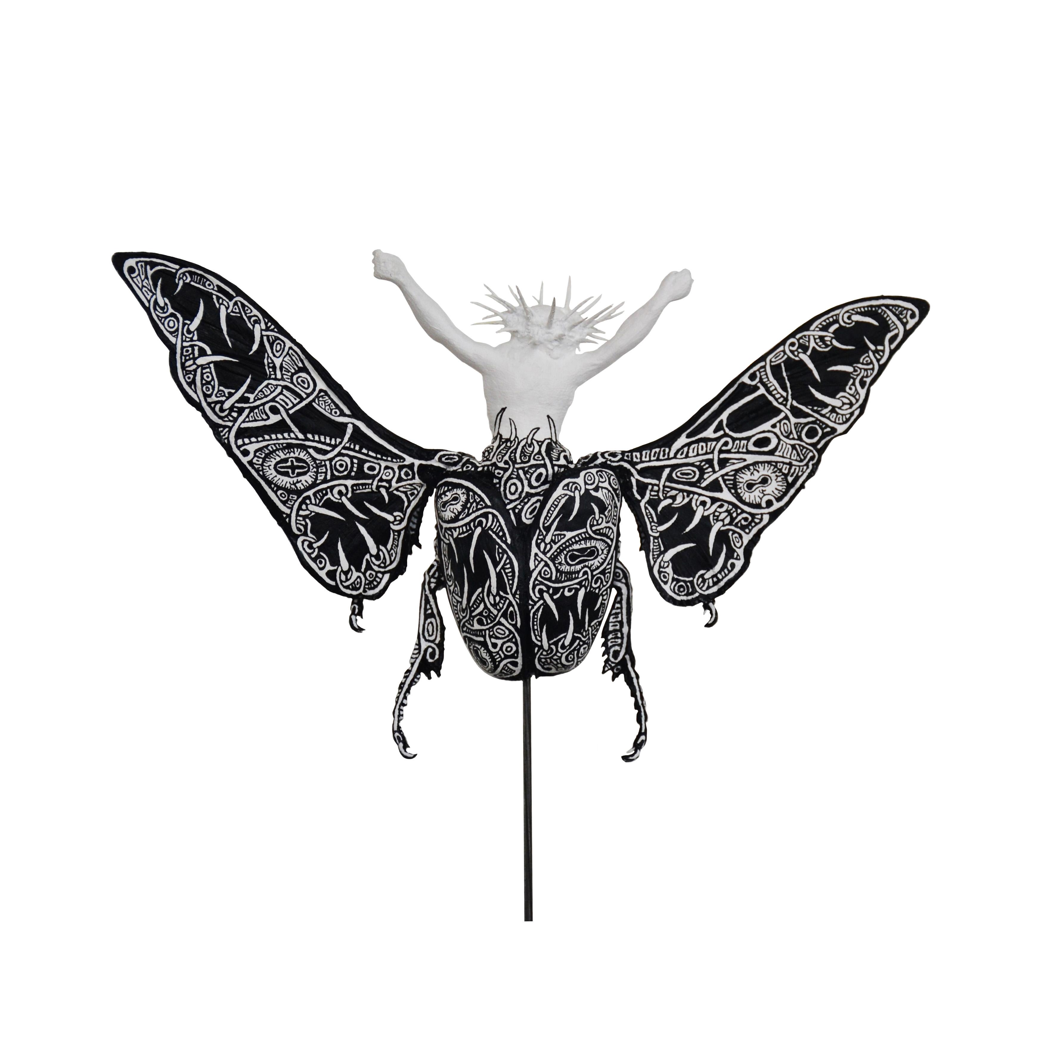 """Christeopteryx IV (""""Sacred"""" Variety)"""