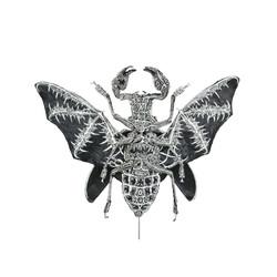Titanus Chiroptera
