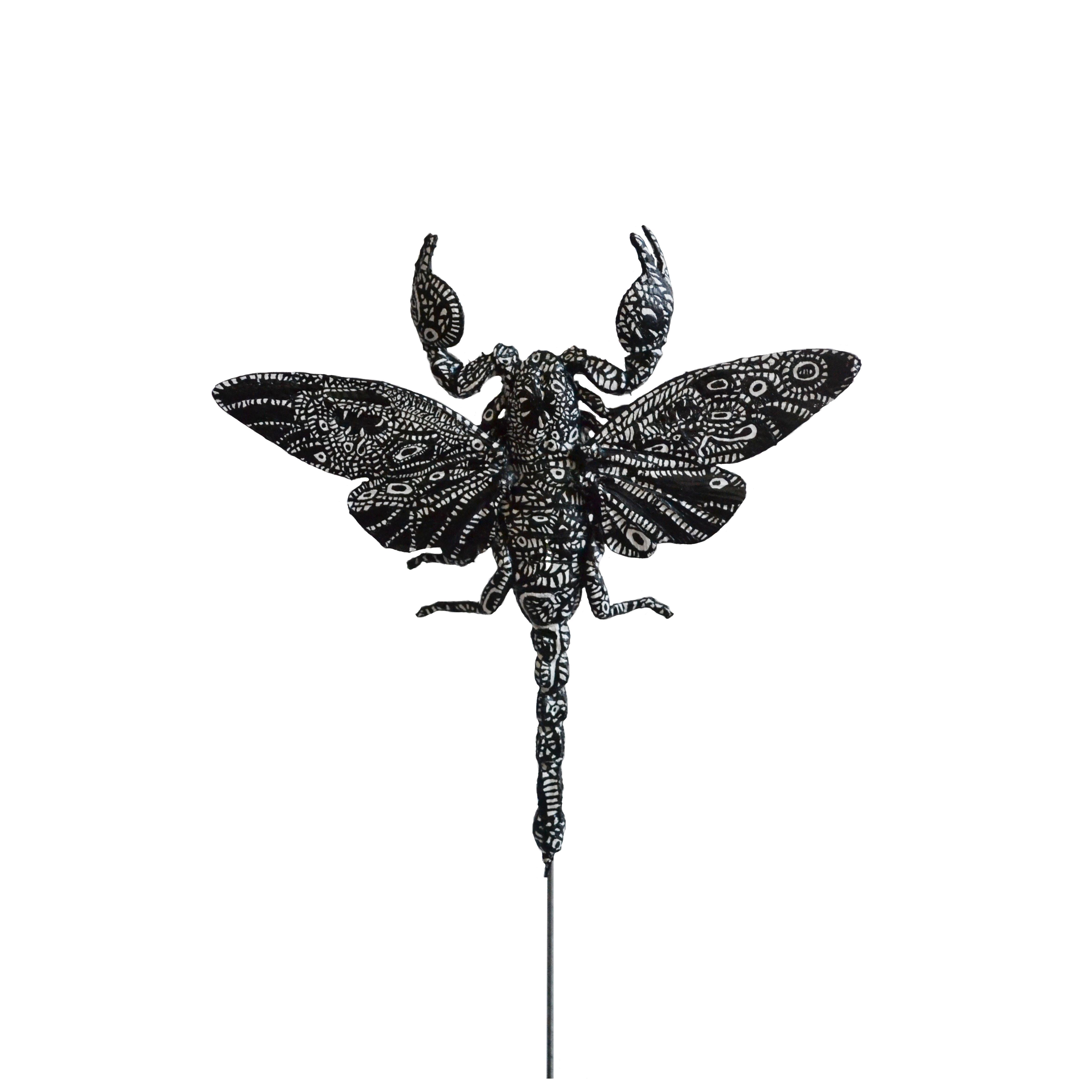 Scorpiones Cicada