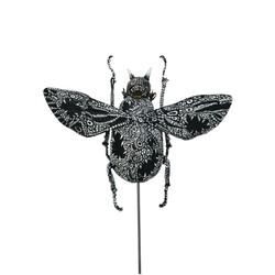 Chiroptera Cicada
