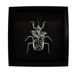 Mouse Bug 2/4 Gen II (UNIQUE PIECE)