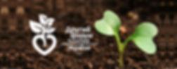 Другий бухгалтерський Агрофорум, Второй бухгалтерский агрофорум