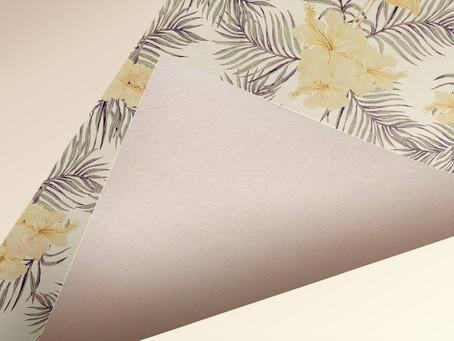 Paper Crane - Ashley Williamson
