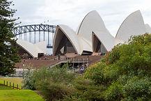 IMG_6388-1-Sydney.jpg
