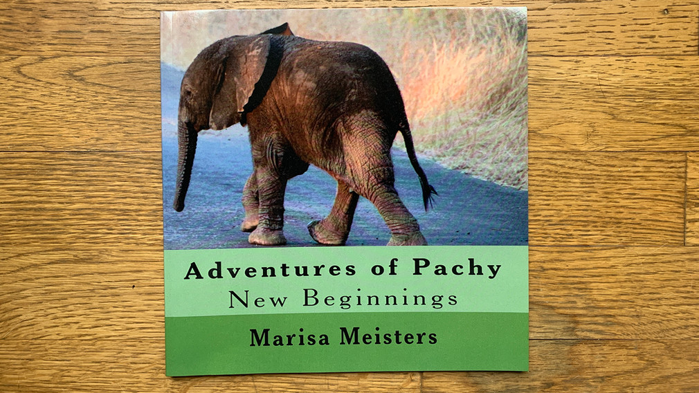 Adventures of Pachy by Marisa Meisters