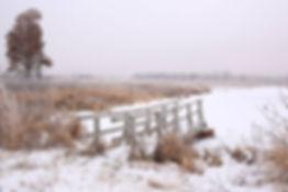 Dec18MaryCarlson1.JPG