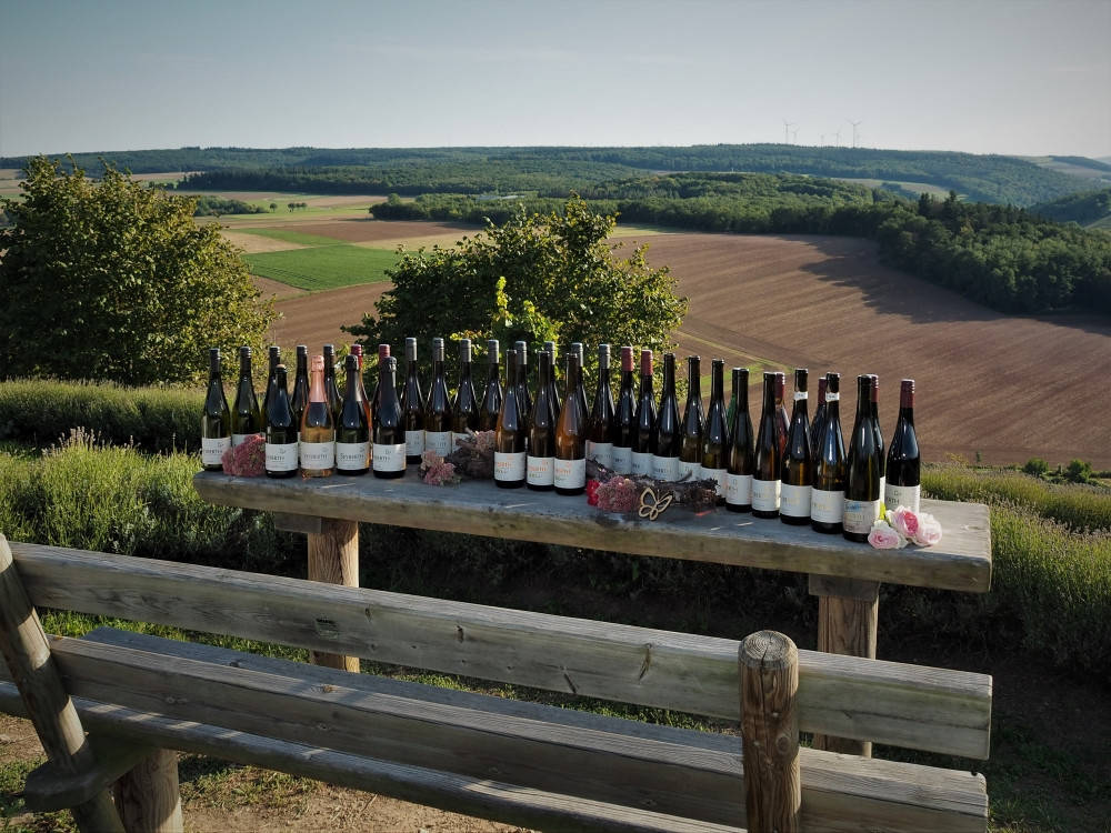 Weinfamilie in der Heerkretz