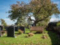 Bench in churchyard.jpg