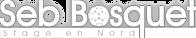 logo_stage_blanc03.png