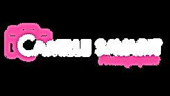 LogoBR_V1.png