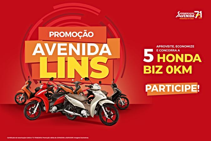 lo_promocao-lins2.png