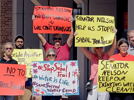 """RMG's #IndependentMediaMonday: The Next """"Standing Rock""""? Florida Protesters Fighting Sabal Trail"""