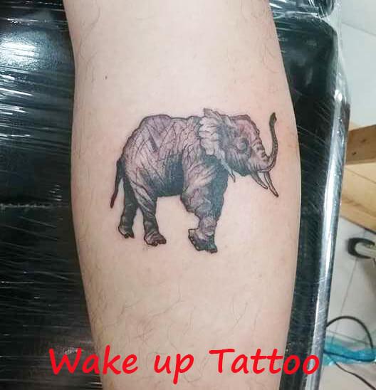 Elephant tattoo on his leg by Wake up Tattoo Phuket