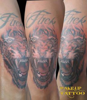 Tiger Tattoo on the knee by Wake up Tattoo Phuket