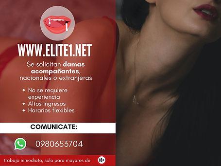 elite1 (5).jpg