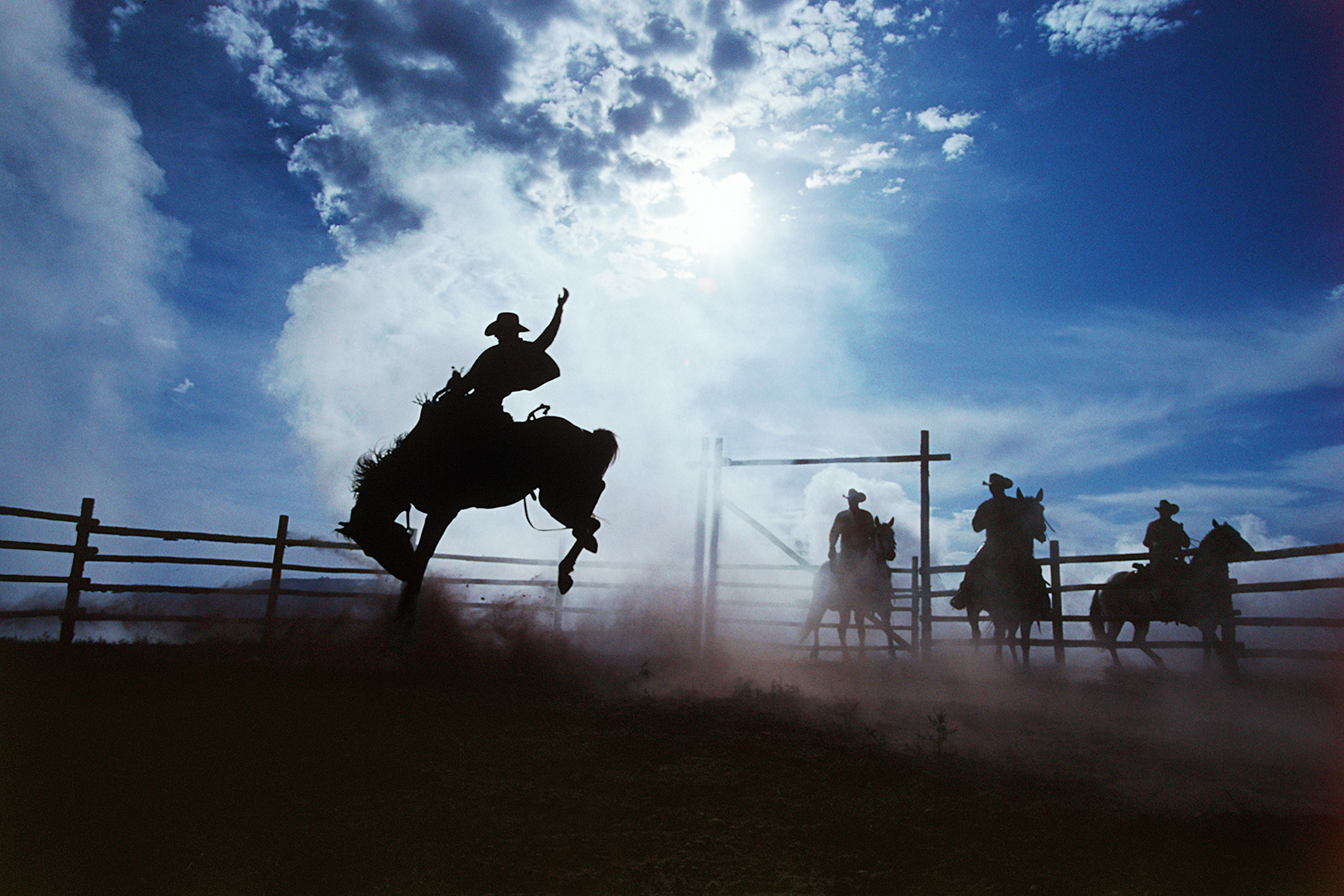 COWBOY #208