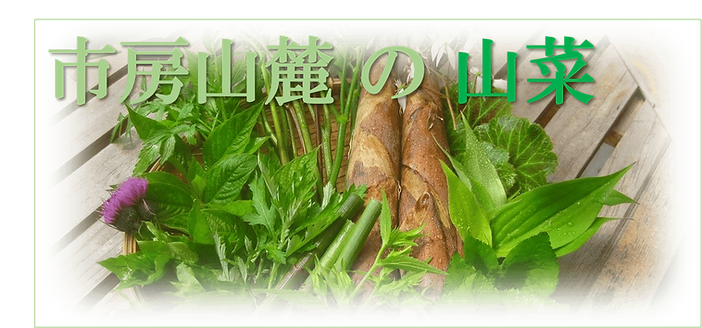 山菜-min.png