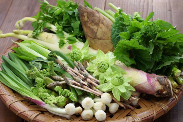 水上村の山菜と野菜