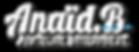 logo anaid.b-04.png