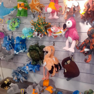 Plushies and other toys for sale at Bailey-Matthews National Shell Museum