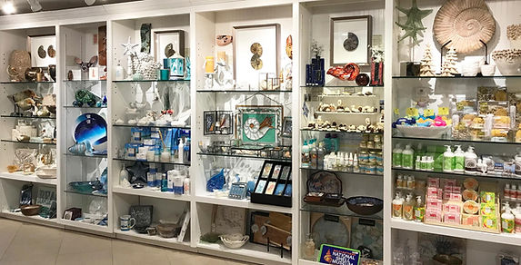 Bailey-Matthews National Shell Museum has an exceptional Museum Store with amazing and unique gifts.
