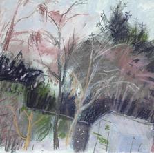 Garden Snowfall