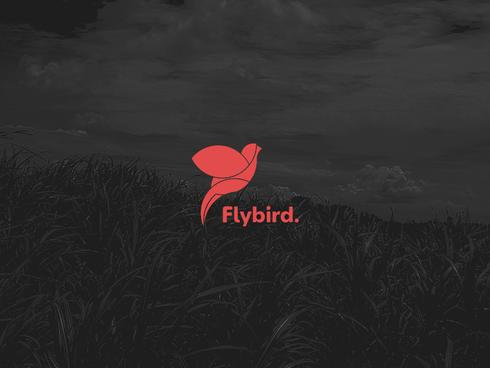 Flybird logotyp