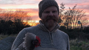 Hen Eviction and Polytunnel Project