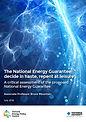 The NEG Report cover.jpg