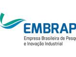 Embrapii, que já teve R$ 1 bi em investimento, fomenta inovação no país