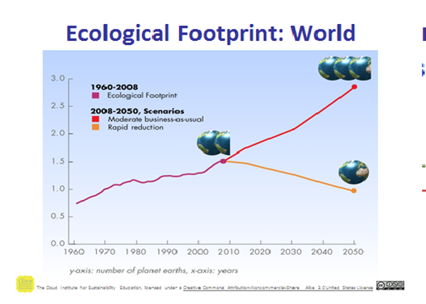 ECOLOGICAL FOOT PRINT WORLD.png