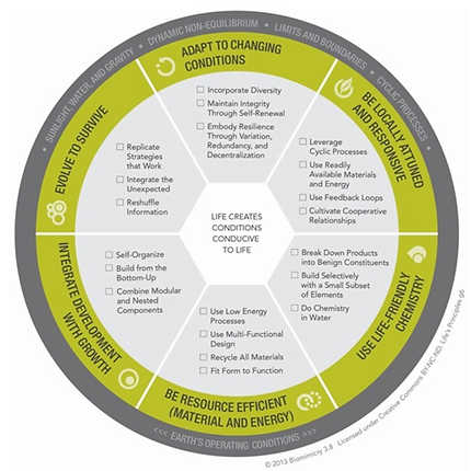 Biomimicry-Design-Lens-Lifes-Principles.