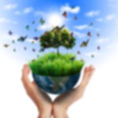 hand-holding-earth-and-tree.jpg