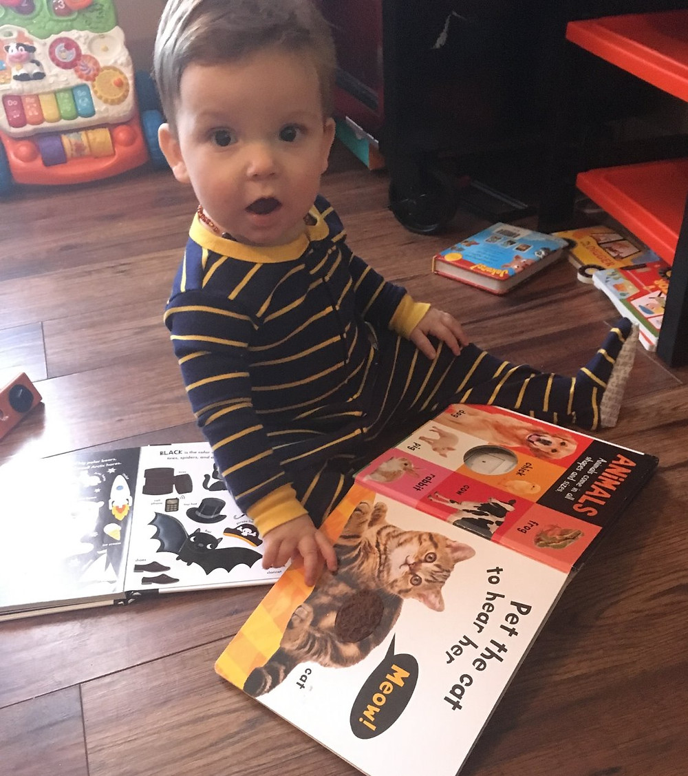 A toddler faces the camera with a surprised look on his face and a book open on his lap. The book is a board book for children with different textures. The picture displayed is of a cat.