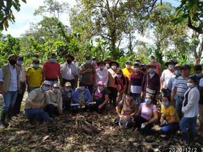 Trasferencia de tecnología a beneficiarios del proyecto de fincas demostrativas en renovación en Tam