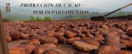 Así se comportó la producción de cacao por departamentos en el 2020