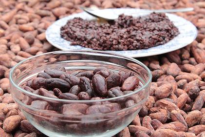 Cacao (8).JPG
